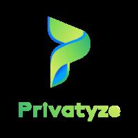 Privatyze Logo -01