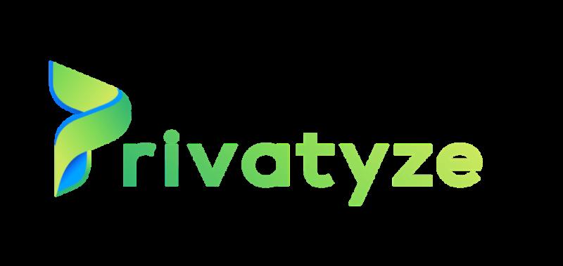Privatyze Logo -16