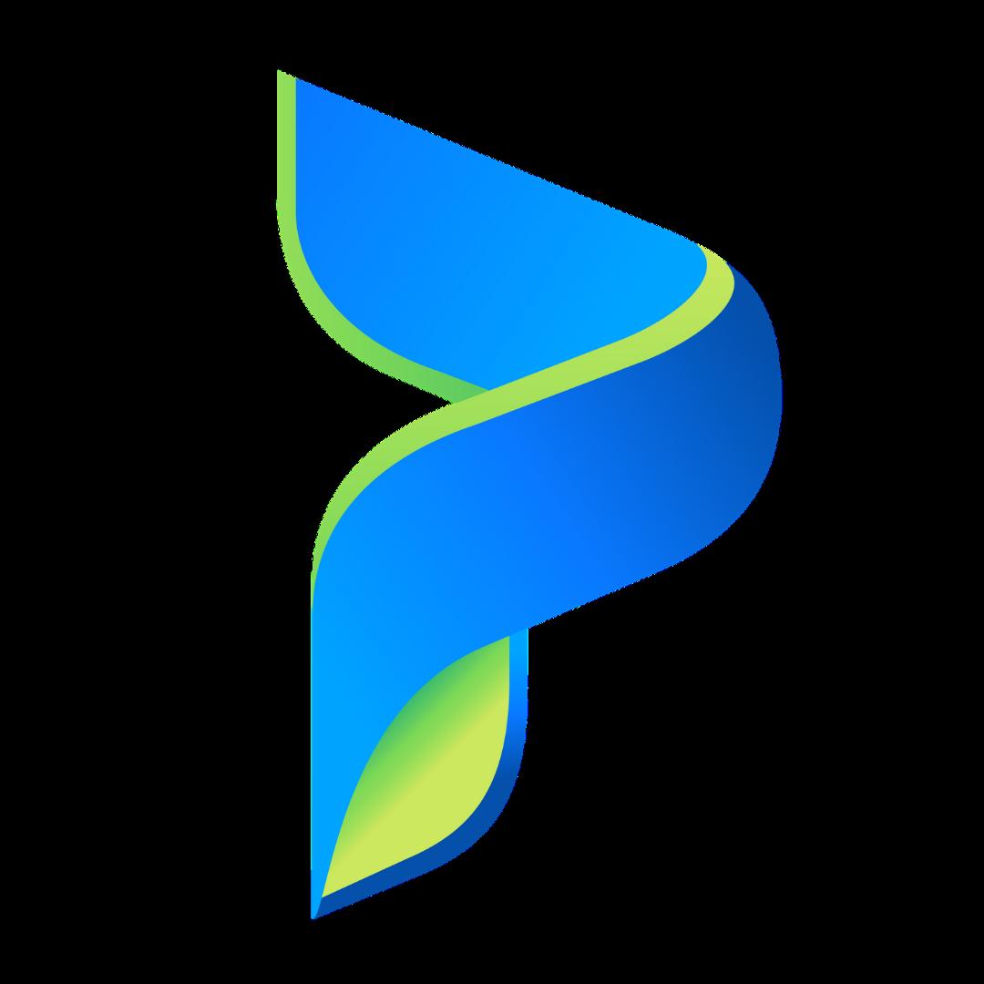 Privatyze Logo
